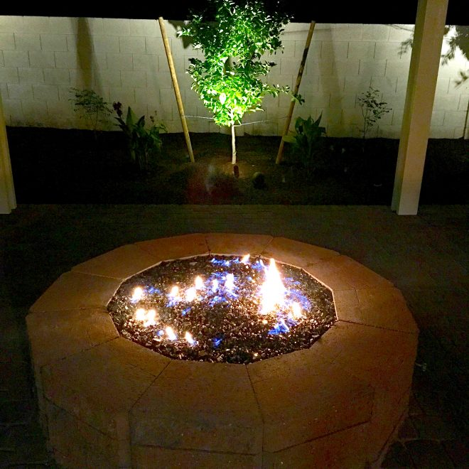 Fire Pit and Tree