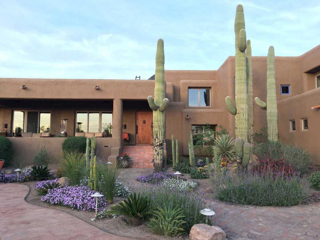 23-Front-Yard-&-Cacti